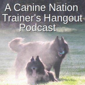 Trainer's Hangout #3: Shelter Training – Podcast